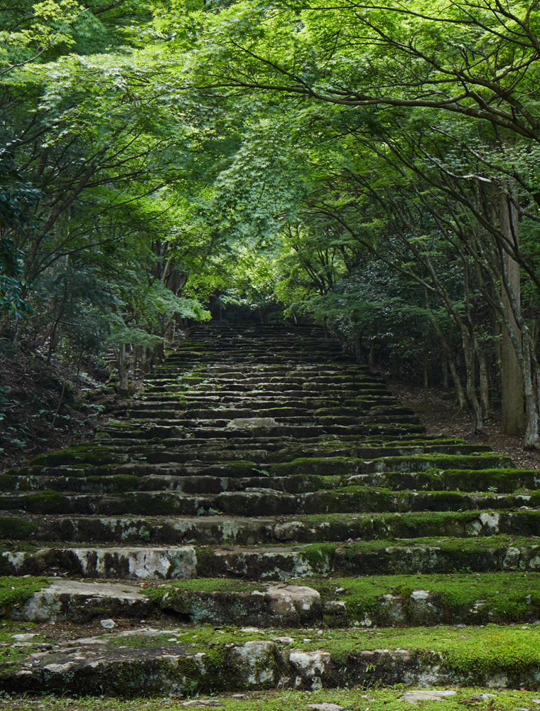 Moss Covered Steps in Gardens - Aman Kyoto, Japan