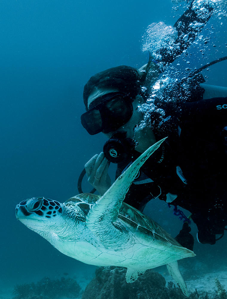 Diving with Turtles, Amanpulo, Philippines