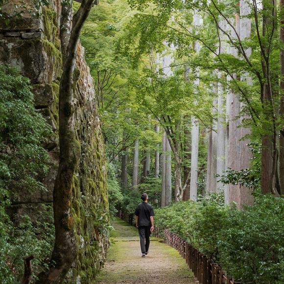 Aman Kyoto, Japan - Forest Walk